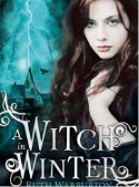 A Witch In Winter book